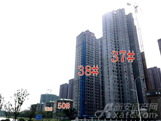 高速时代城沿岸高层37#、38#栋防护网已拆除完毕