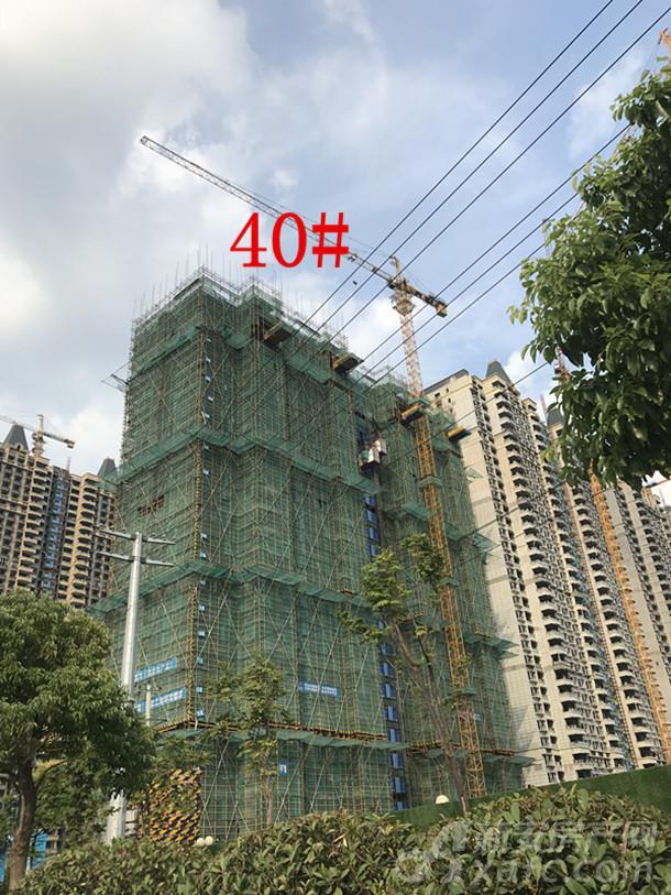 40#楼项目进度