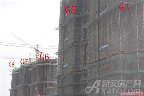 中海城实景图