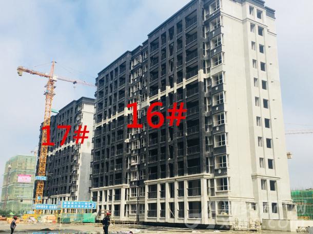 16#、17#(11层)正在粉刷外立面