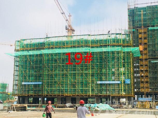 19#(18层)建至约8层左右
