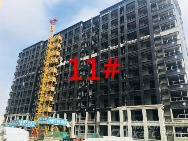 11#(11层)已封顶,正在粉刷外立面