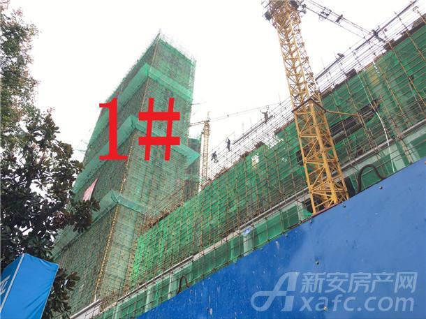 富安德森广场1#楼