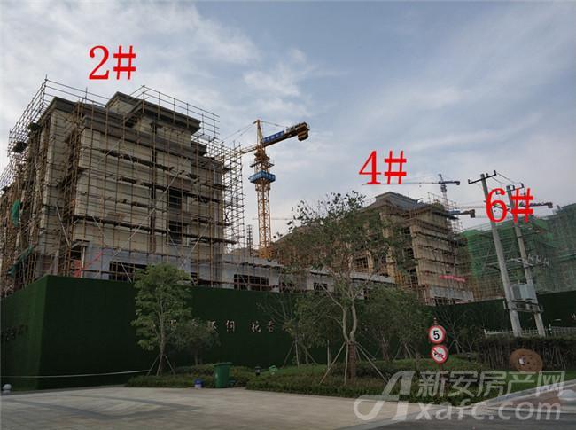 淮矿东方蓝海2#、4#、6#项目进度