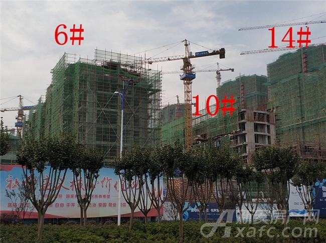 淮矿东方蓝海6#、10#、14#项目进度