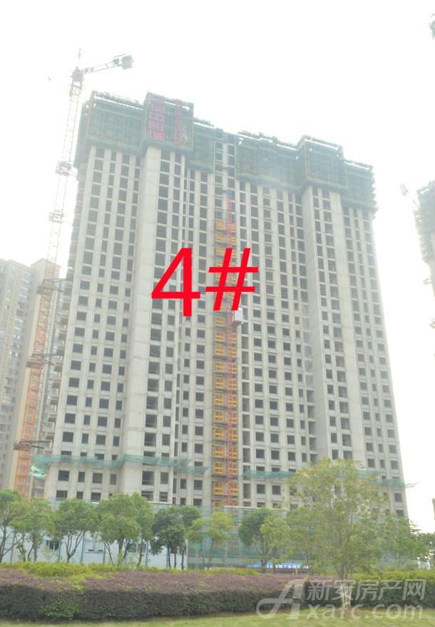 金瑞中心城4#楼