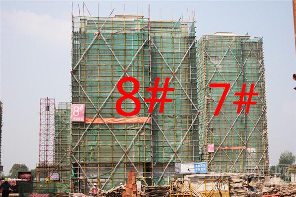 【观湖花园】9月进度:7#、8#已封顶,在进行内部工作