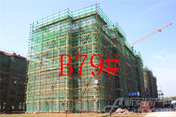 【伊美城市首府】10月进度:B79#已建至5层