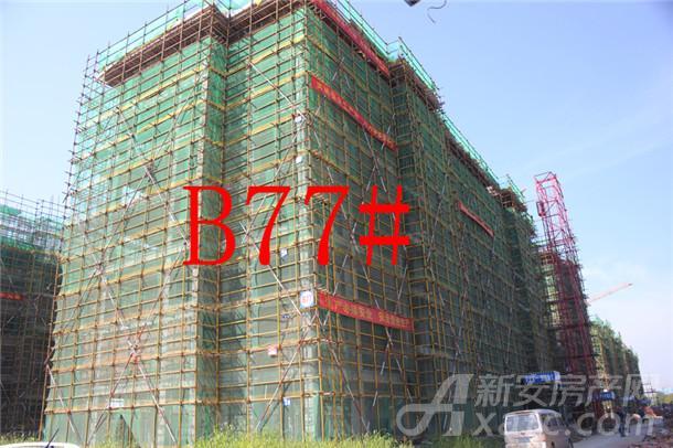 【伊美城市首府】10月进度:B77#已建至5层