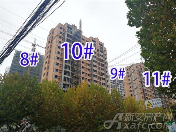 东成国际广场11月项目进度