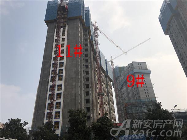 中航长江广场11#、9#楼