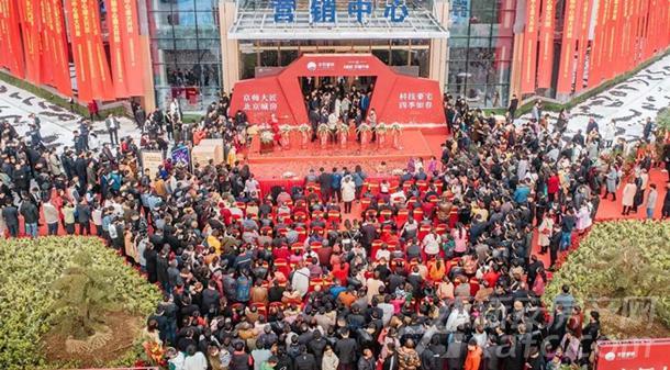 11月10日营销中心开放现场人山人海.jpg