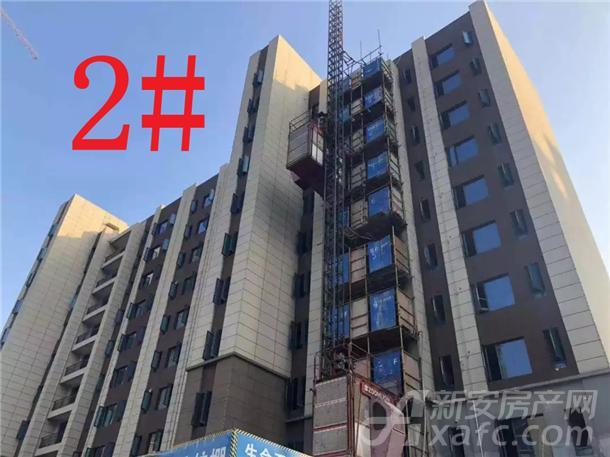 铜陵碧桂园2#楼