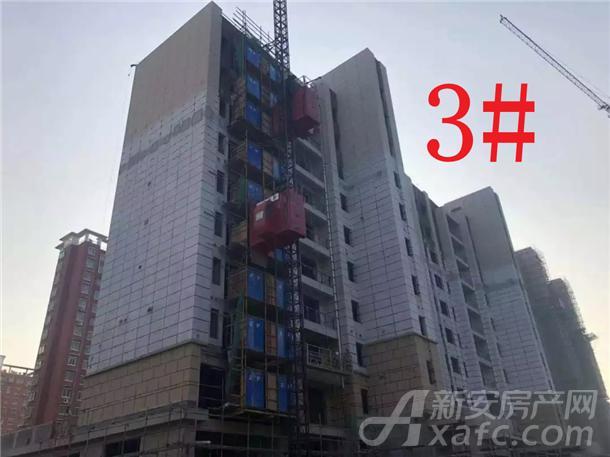 铜陵碧桂园3#楼