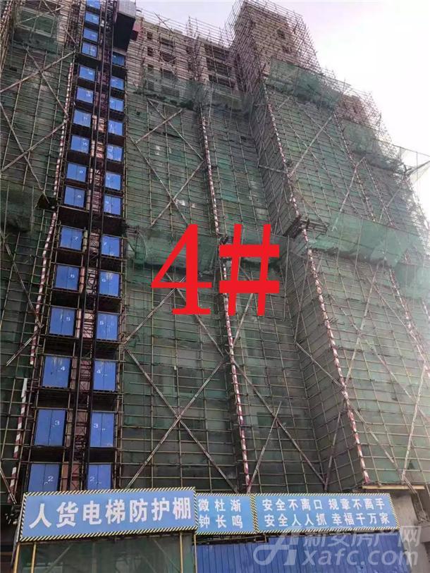 铜陵碧桂园4#楼
