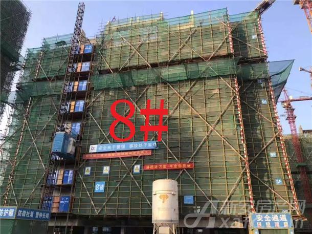 铜陵碧桂园8#楼