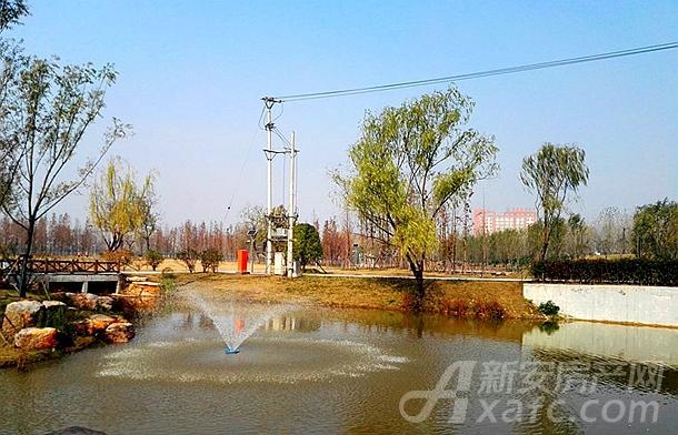 颍河综合治理项目景观绿化工程