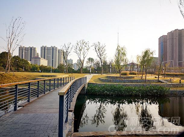 中清河公园