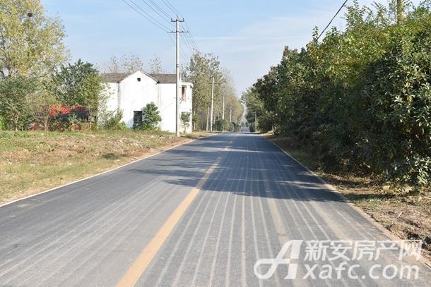 蜀山区W1806地块周边道路