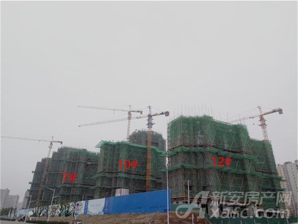 禹洲平湖秋月1月份工程进度