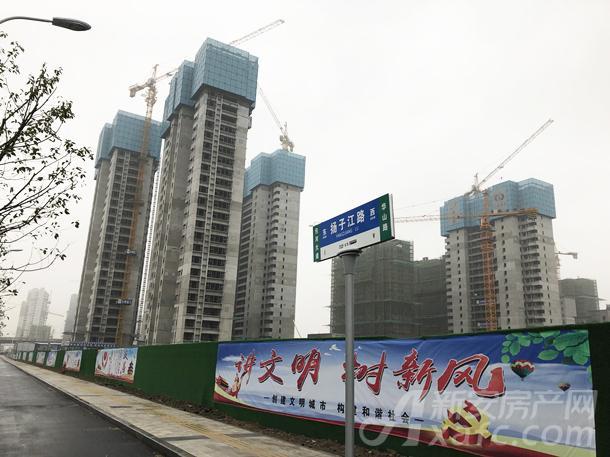 碧桂园中堂1月项目进度