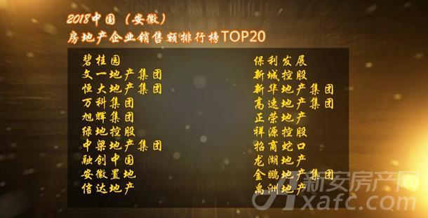 中国(安徽)第十届楼市总评榜房地产企业销售额排行榜TOP20房企