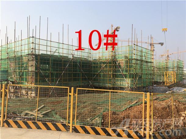 花语江南10#楼
