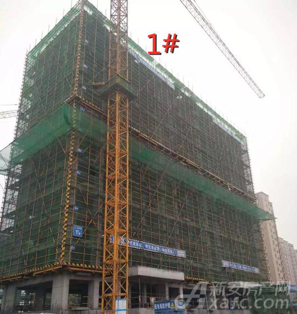 万瑞林山翠语2月项目进度