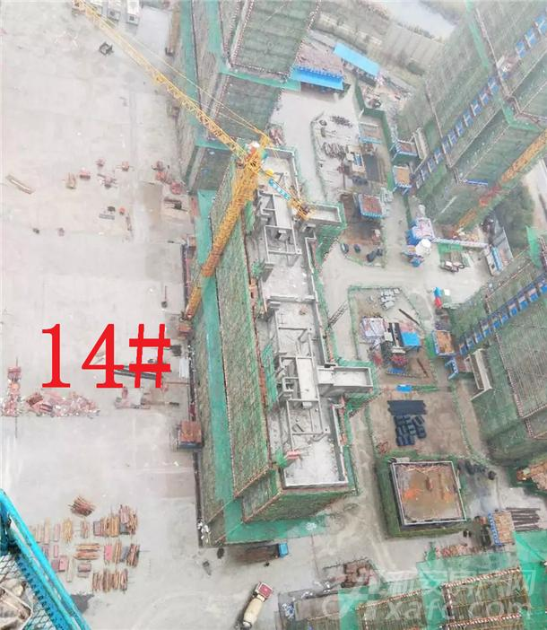 14#楼工程进度