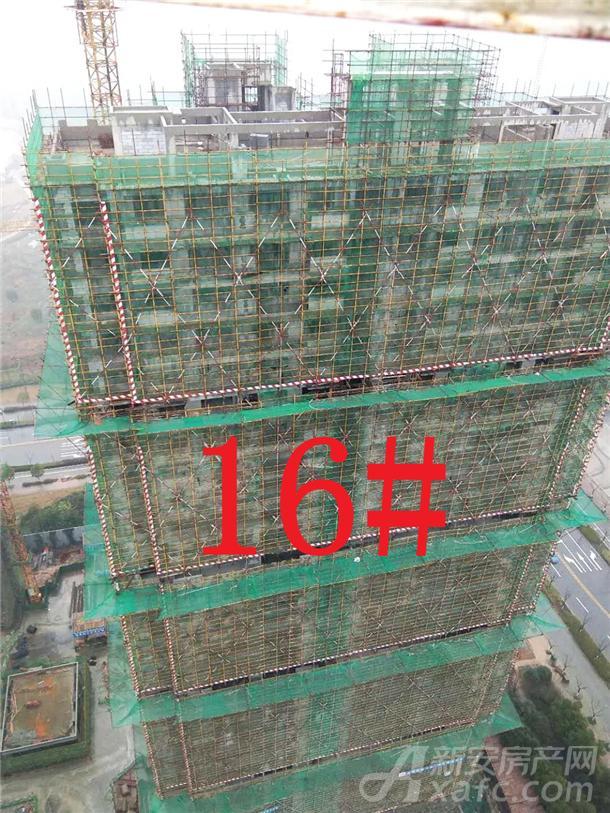 16#楼工程进度