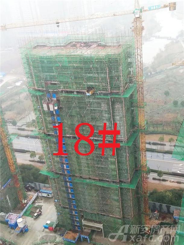 18#楼工程进度