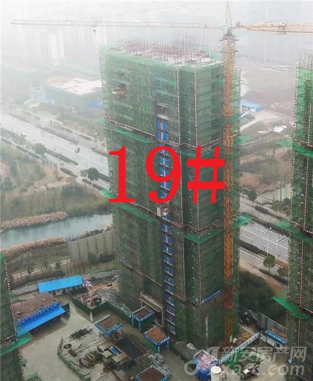 19#楼工程进度