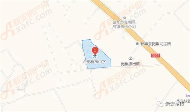 合肥新桥中学