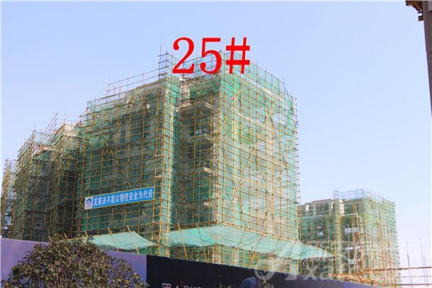 华邦蜀山别院3月项目进度