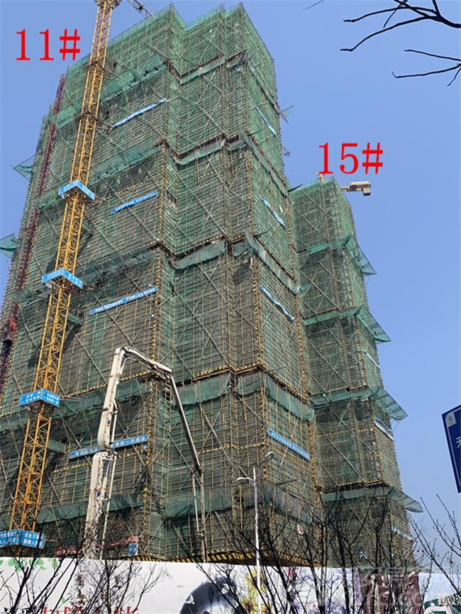 金大地紫金公馆11#、15#楼项目进度