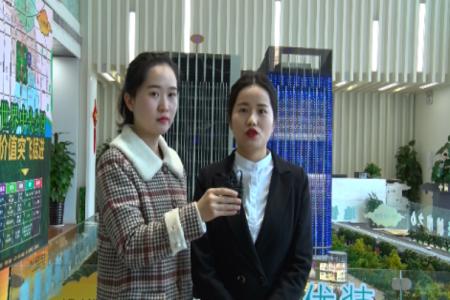 中辰未来港视频
