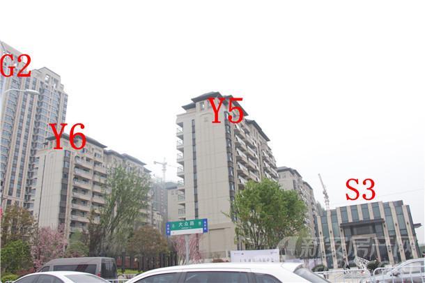 中海城项目进度图
