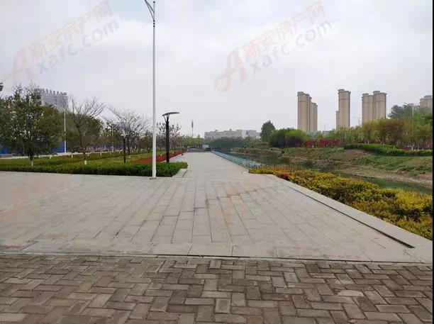 龙凤新河公园实拍图.jpg