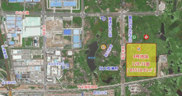 4号地块卫星图