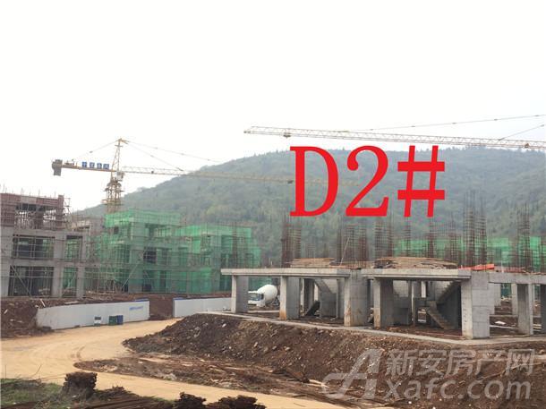 文一•十里春风D2#楼