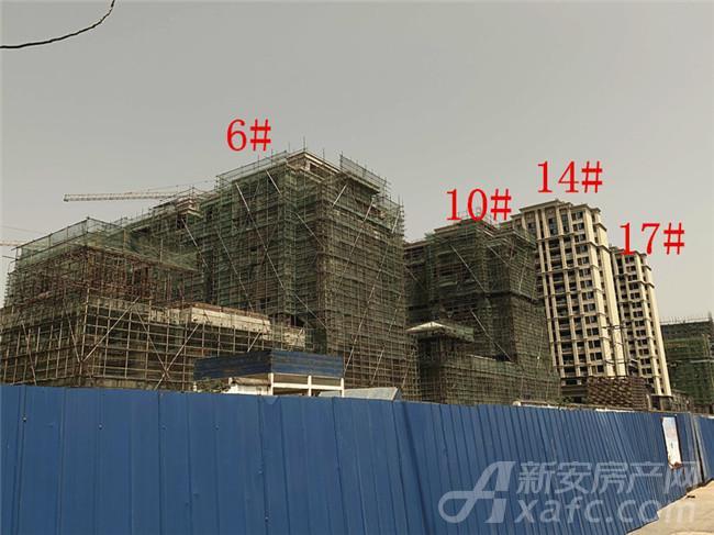 淮矿东方蓝海6#、10#、14#、17#楼项目进度