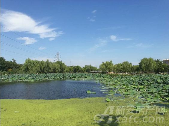 菱溪湖公园