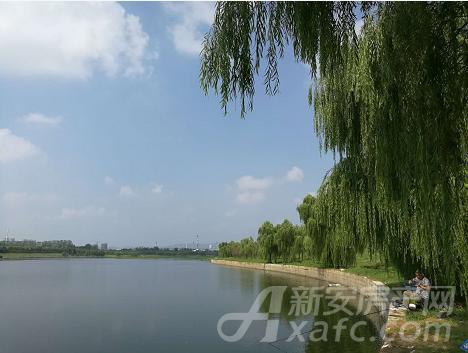 清流河公园