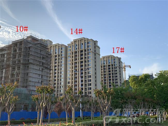 东方蓝海10#、14#、17#楼项目进度