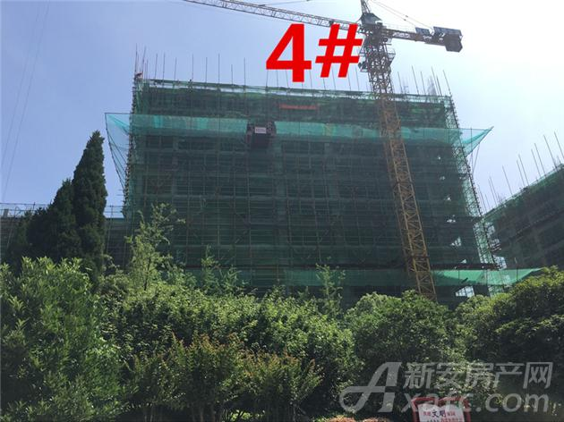 富安德林世家4#楼