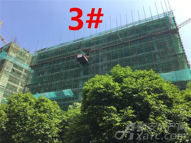 富安德林世家3#楼