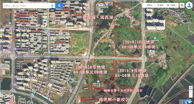 铜官区铜土储字[2019] 8号—10号地块卫星图