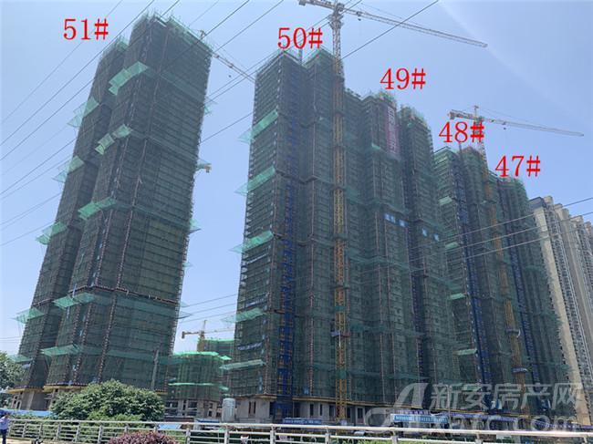 恒大绿洲47#—51#楼项目进度