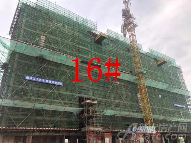 华源翠湖湾16#楼