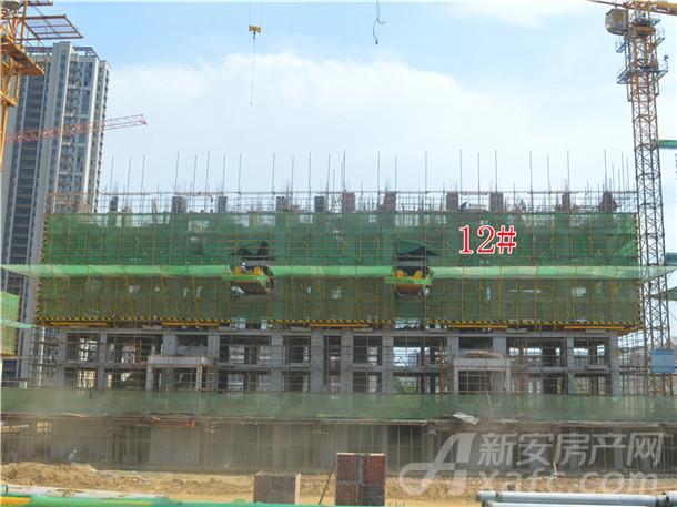 12#建设中
